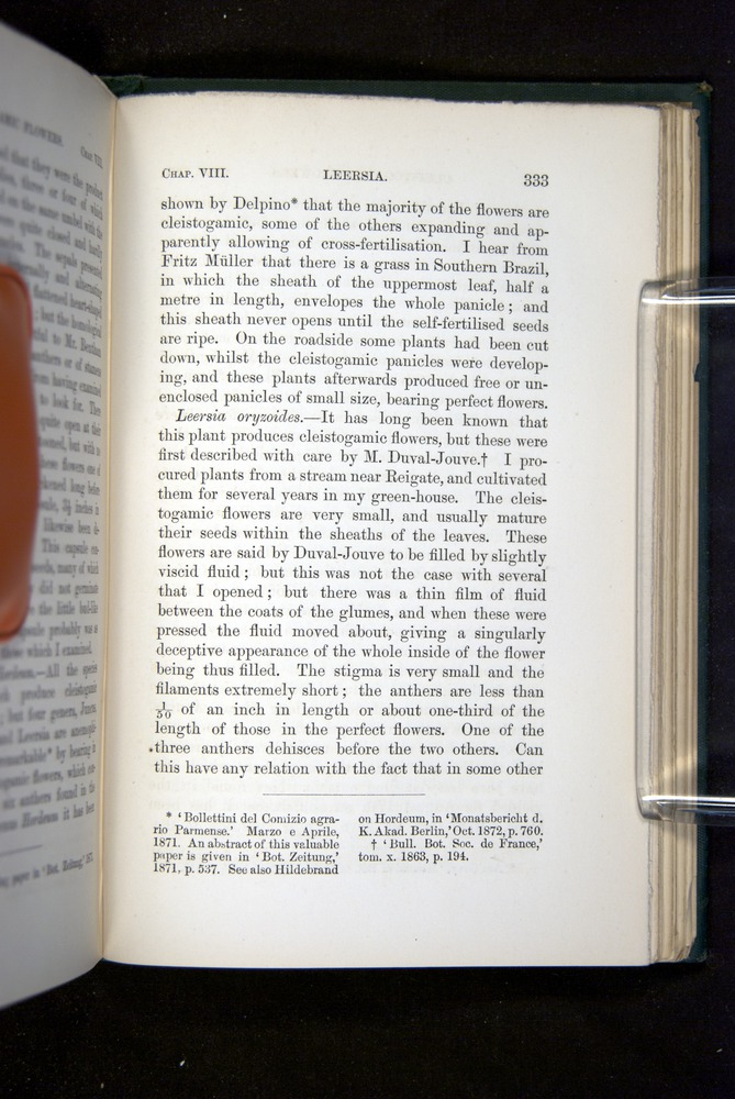 Image of Darwin-F1277-1877-333