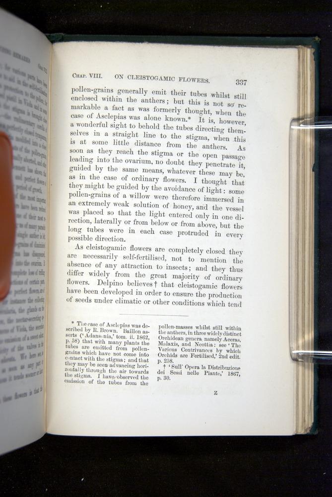 Image of Darwin-F1277-1877-337