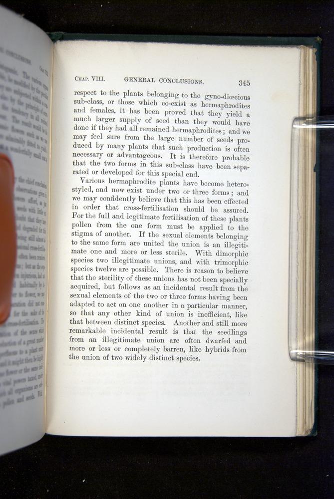 Image of Darwin-F1277-1877-345