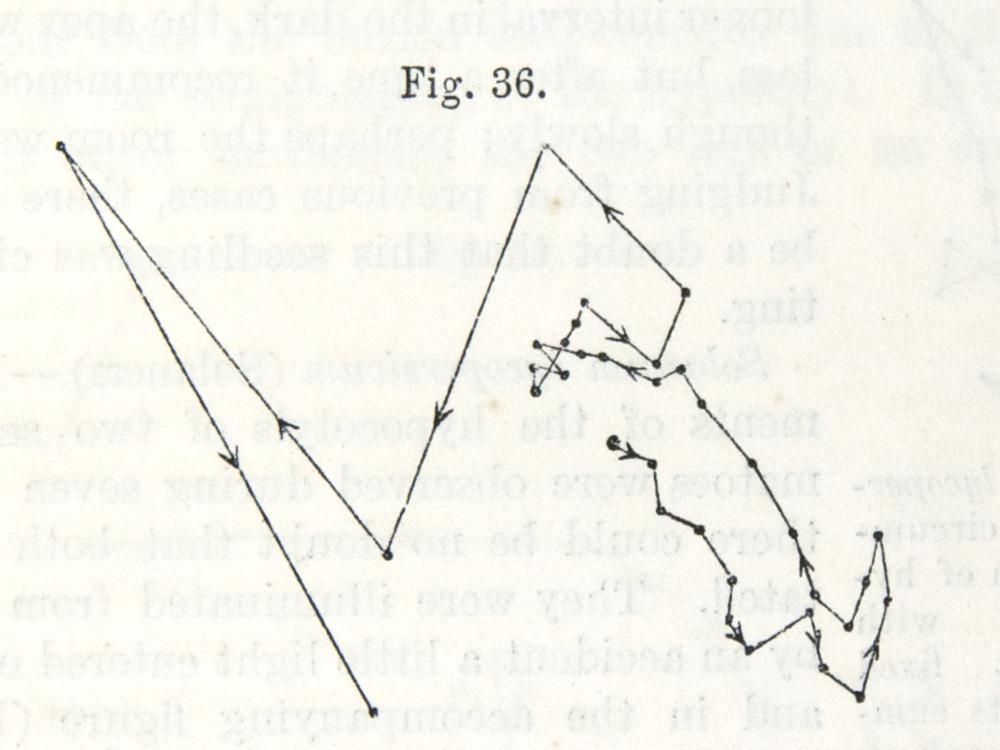 Image of Darwin-F1325-1880-zzzz-det-047