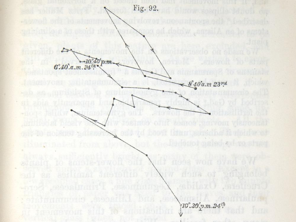 Image of Darwin-F1325-1880-zzzz-det-225