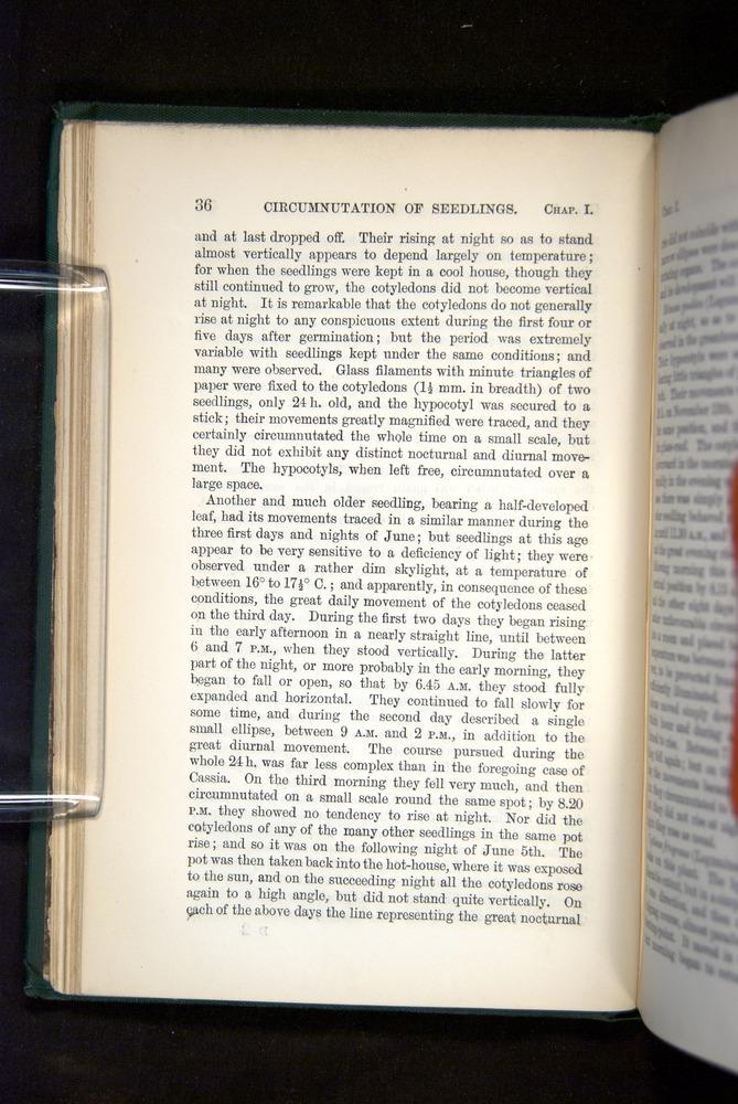 Image of Darwin-F1325-1880-036
