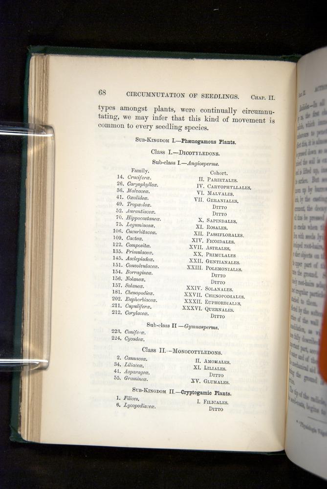 Image of Darwin-F1325-1880-068