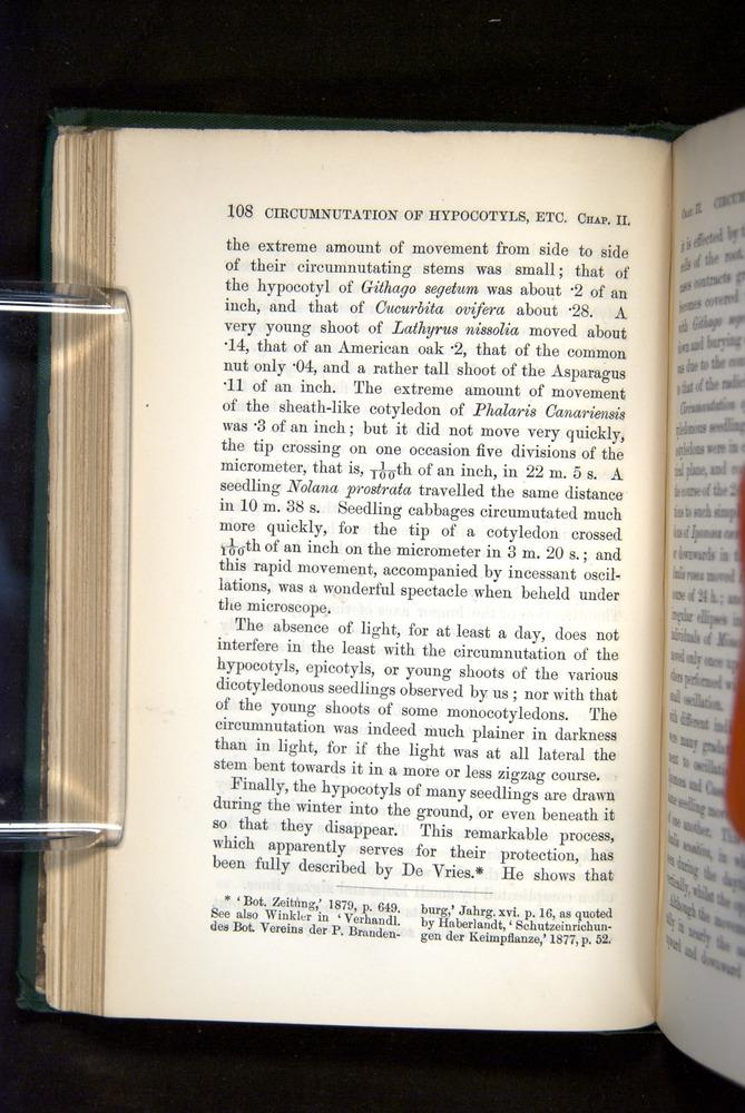 Image of Darwin-F1325-1880-108