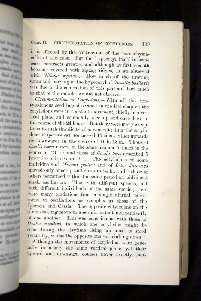 Image of Darwin-F1325-1880-109