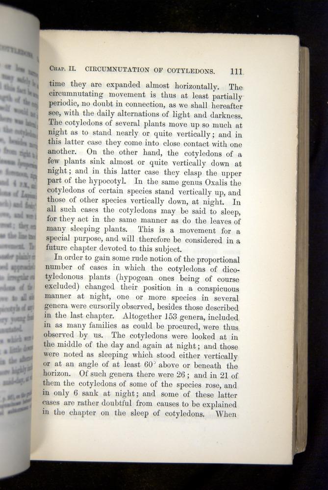 Image of Darwin-F1325-1880-111