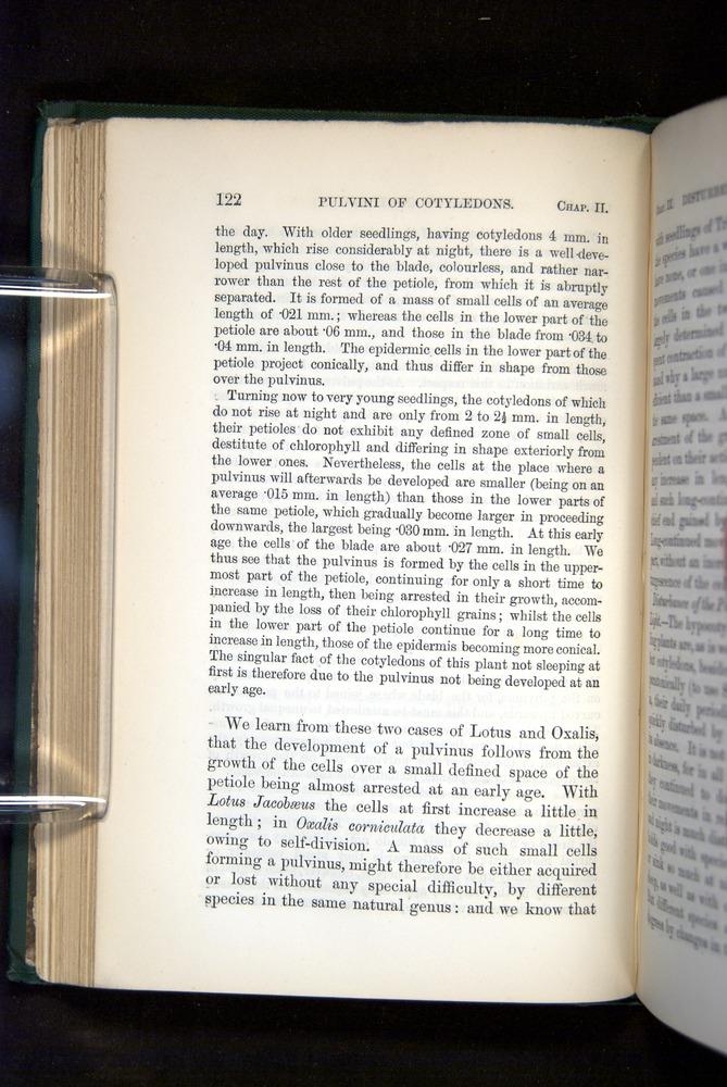 Image of Darwin-F1325-1880-122