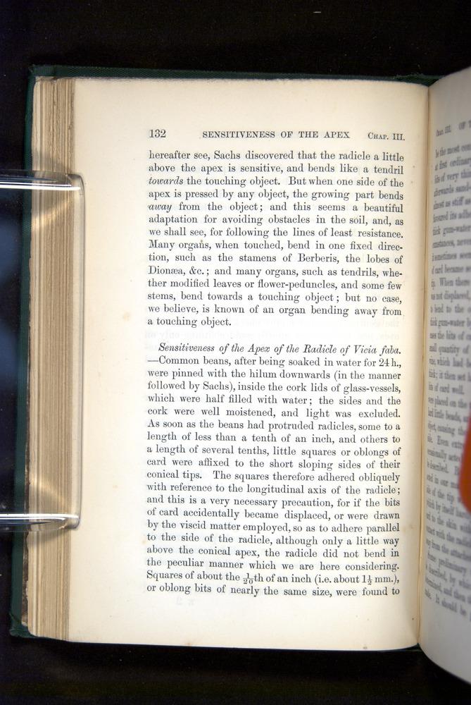 Image of Darwin-F1325-1880-132