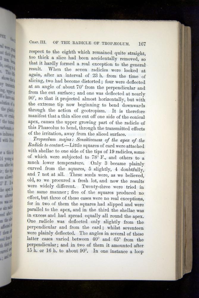 Image of Darwin-F1325-1880-167