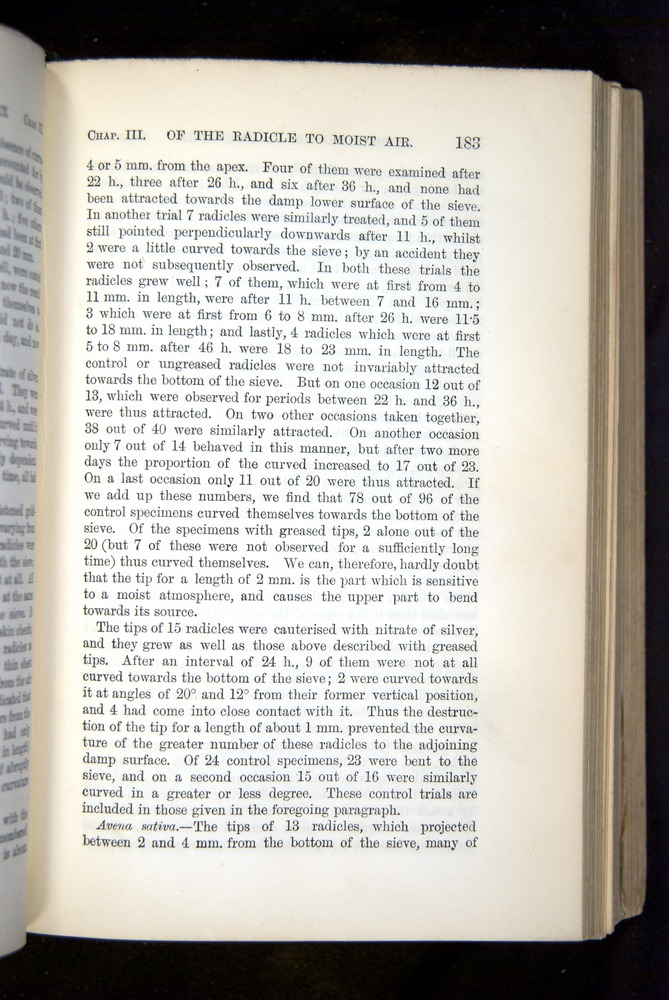Image of Darwin-F1325-1880-183