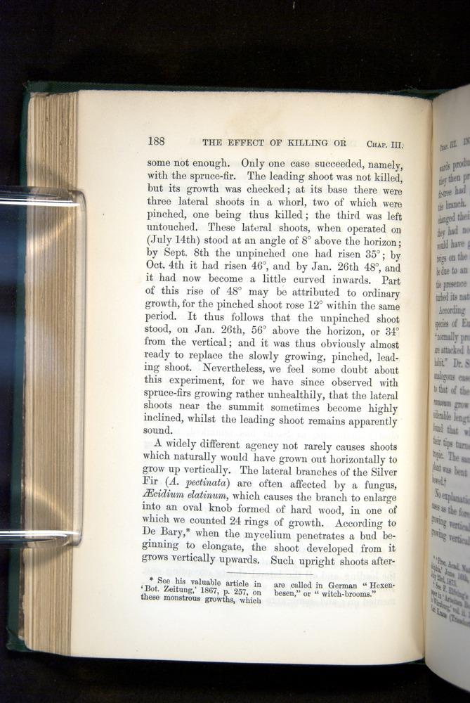 Image of Darwin-F1325-1880-188