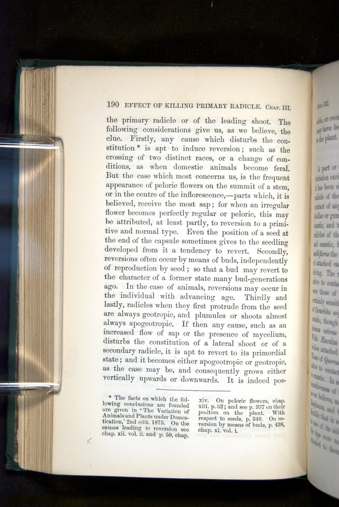 Image of Darwin-F1325-1880-190
