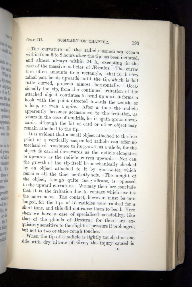 Image of Darwin-F1325-1880-193
