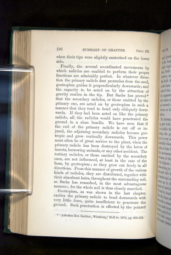Image of Darwin-F1325-1880-196