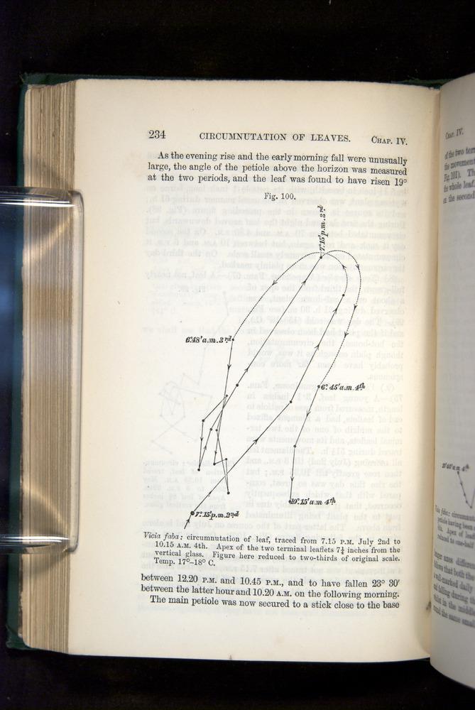Image of Darwin-F1325-1880-234