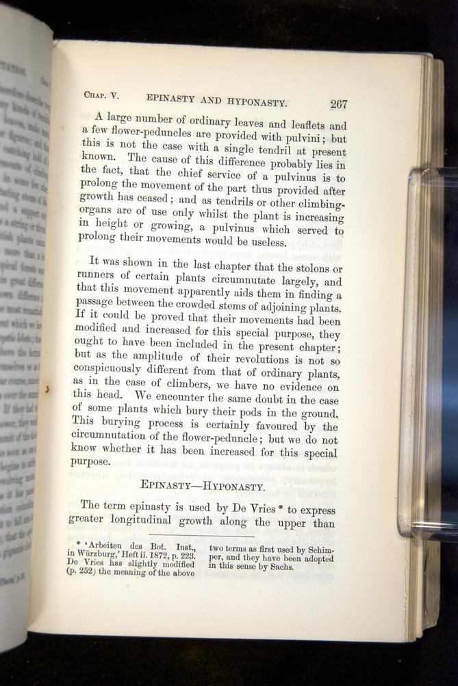 Image of Darwin-F1325-1880-267