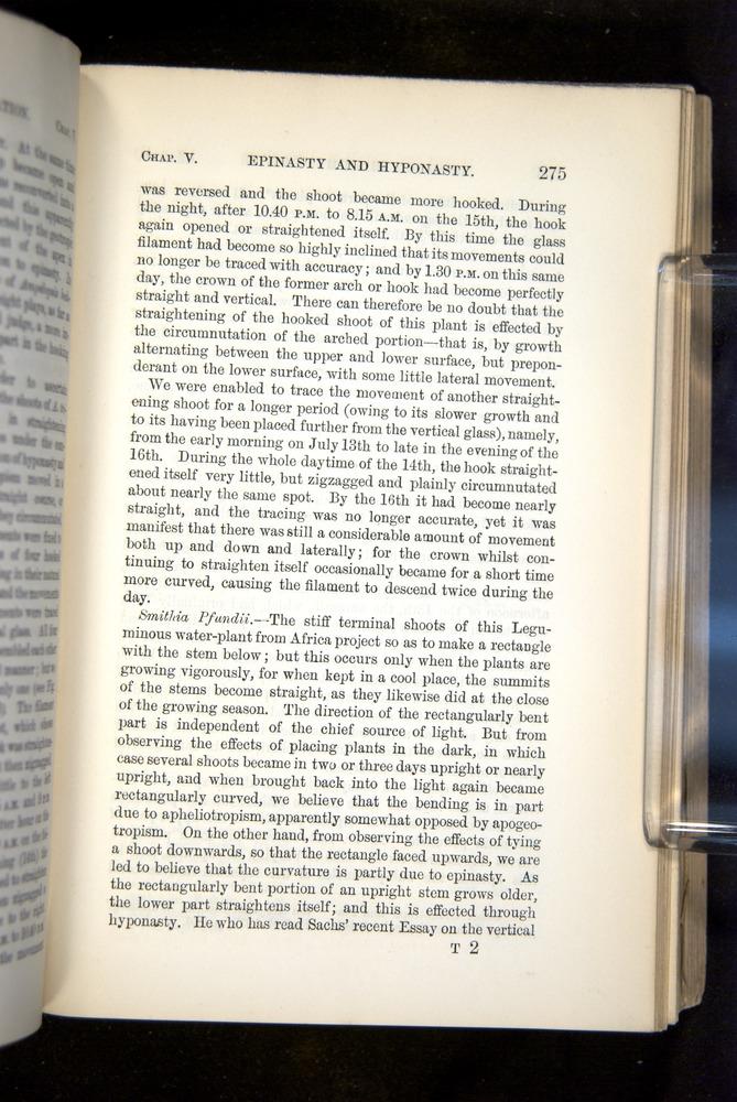 Image of Darwin-F1325-1880-275