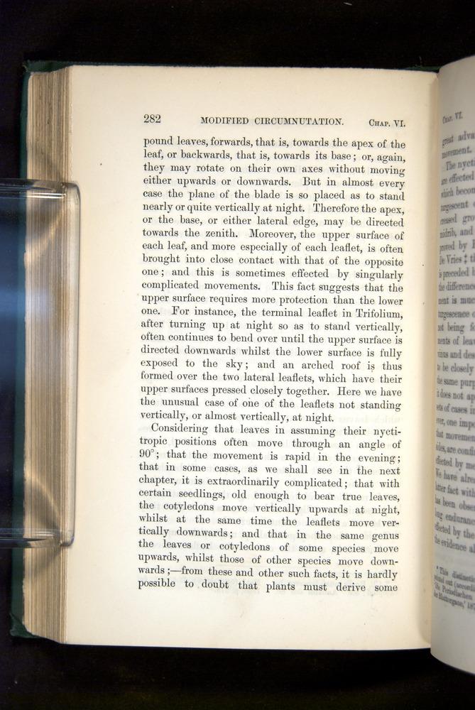 Image of Darwin-F1325-1880-282