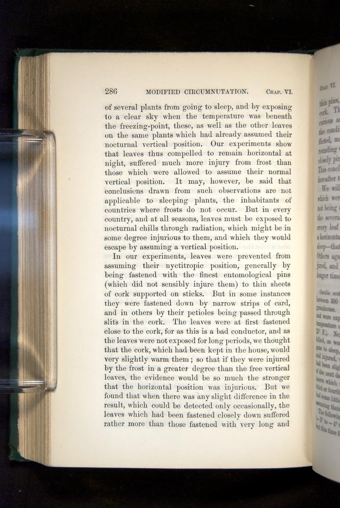 Image of Darwin-F1325-1880-286