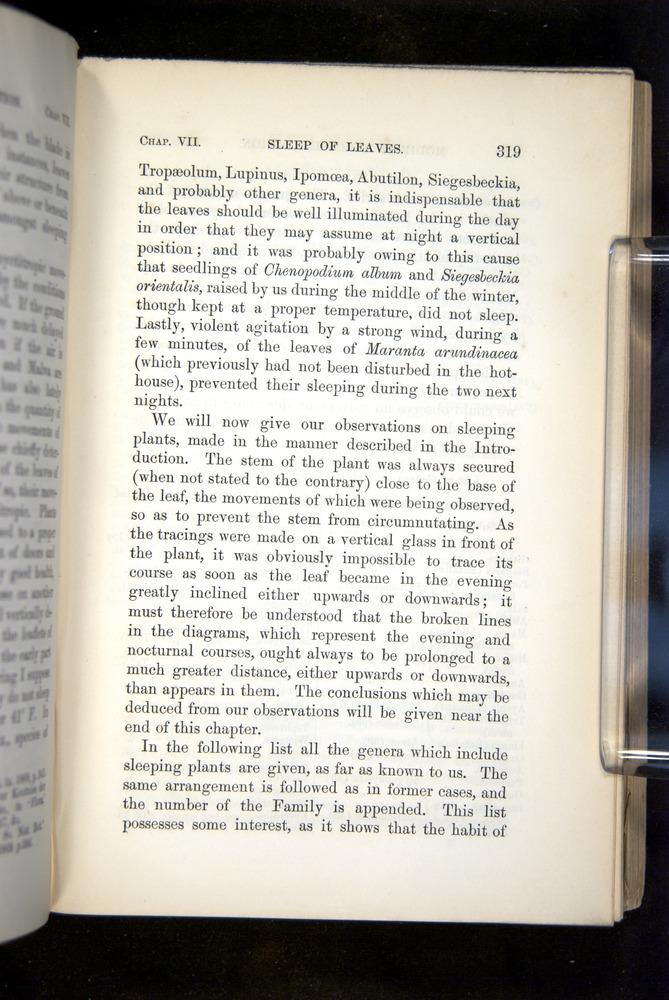 Image of Darwin-F1325-1880-319
