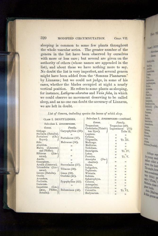 Image of Darwin-F1325-1880-320