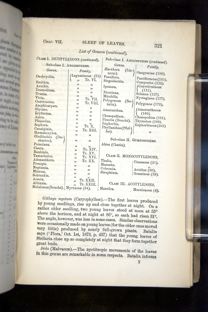 Image of Darwin-F1325-1880-321