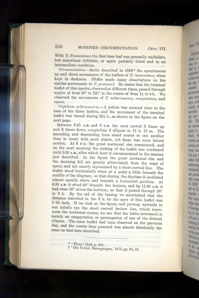 Image of Darwin-F1325-1880-350