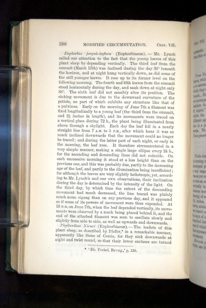 Image of Darwin-F1325-1880-388