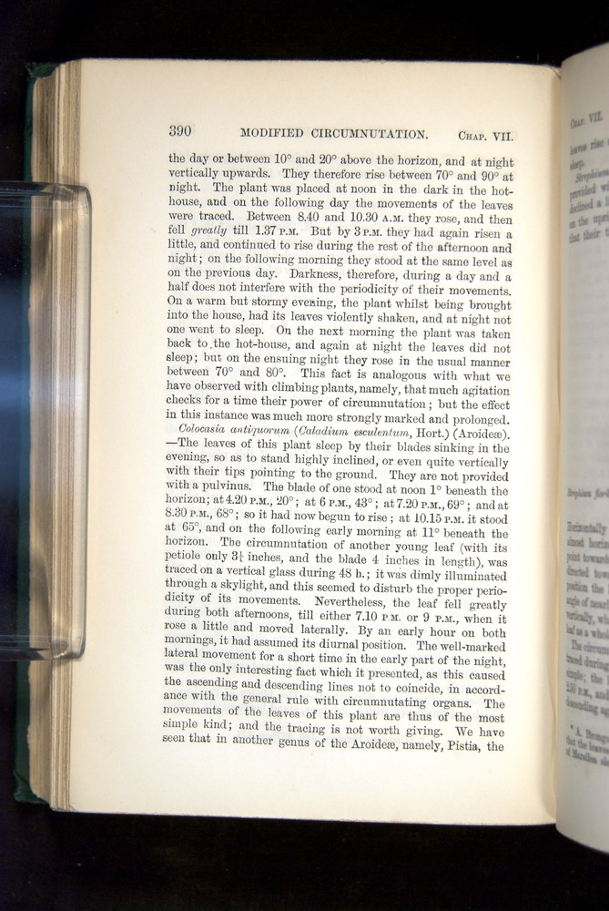 Image of Darwin-F1325-1880-390