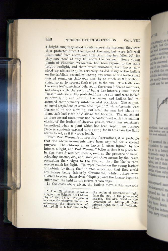 Image of Darwin-F1325-1880-446