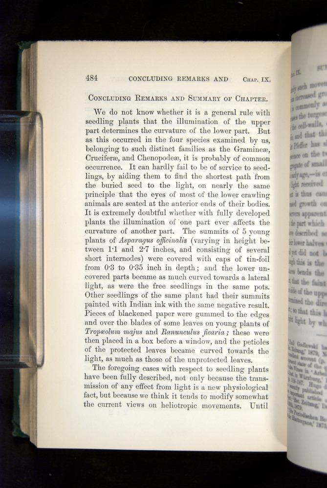 Image of Darwin-F1325-1880-484