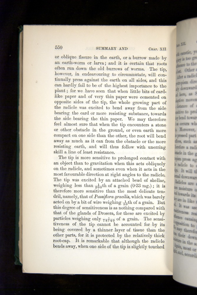 Image of Darwin-F1325-1880-550