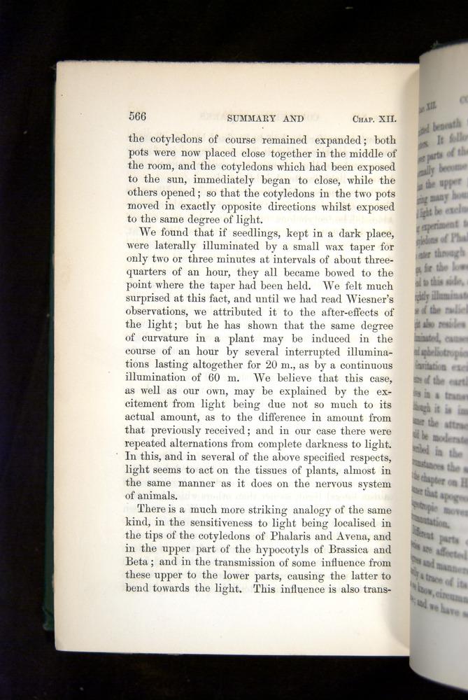 Image of Darwin-F1325-1880-566