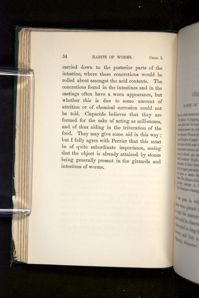 Image of Darwin-F1357-1881-054