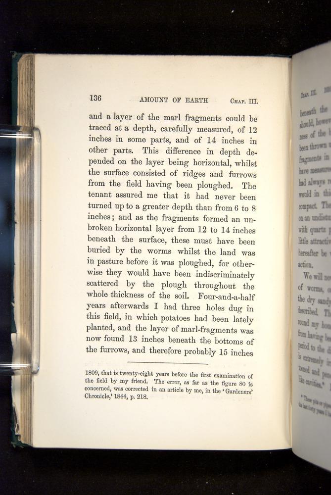 Image of Darwin-F1357-1881-136