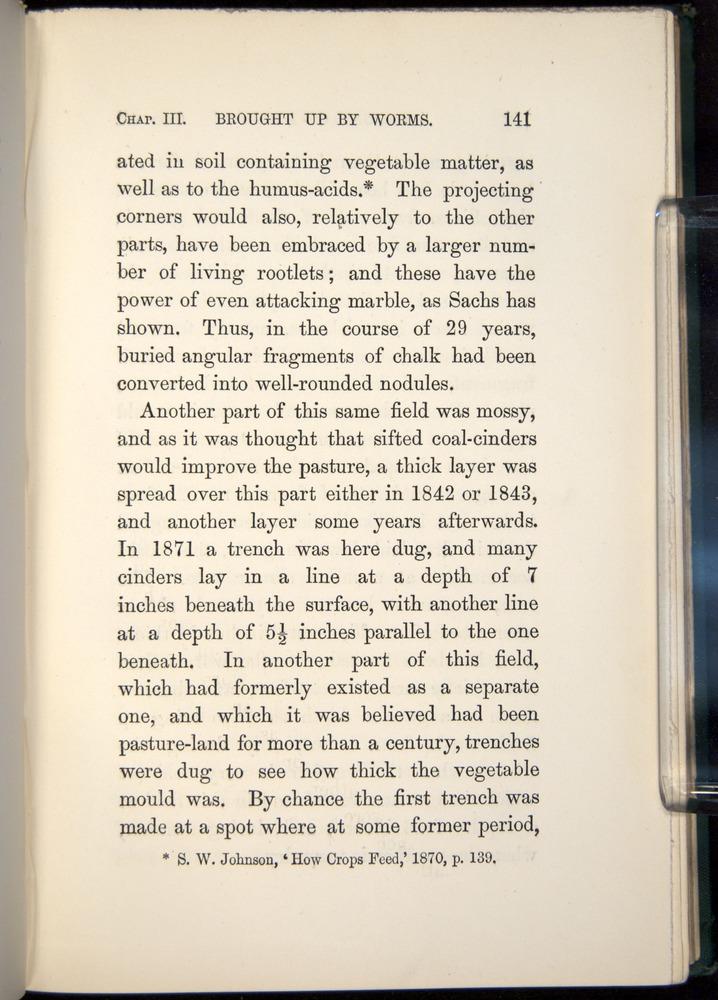 Image of Darwin-F1357-1881-141