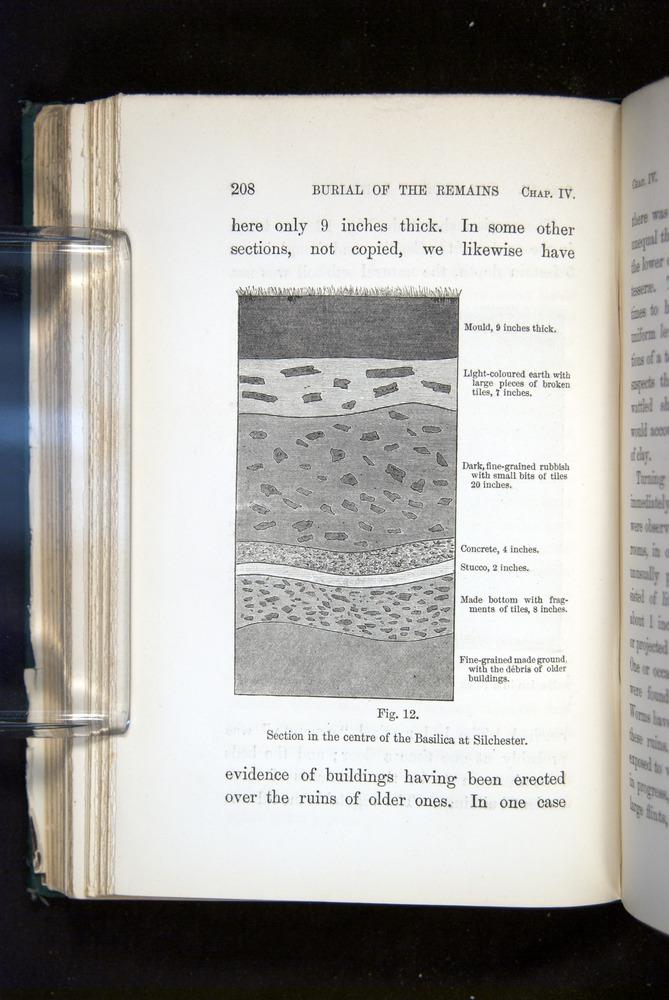 Image of Darwin-F1357-1881-208