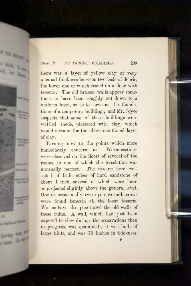 Image of Darwin-F1357-1881-209