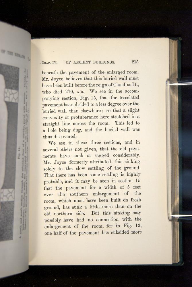 Image of Darwin-F1357-1881-215