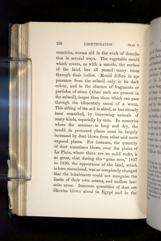 Image of Darwin-F1357-1881-236