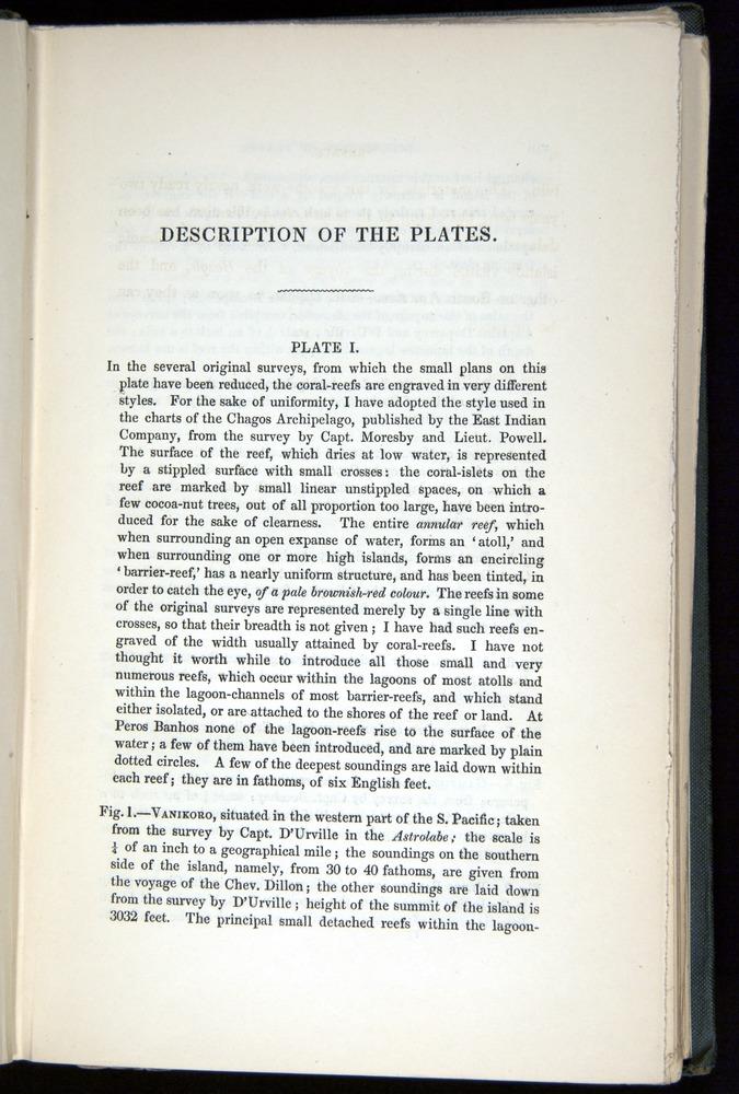 Image of Darwin-F271-1842-000-z03