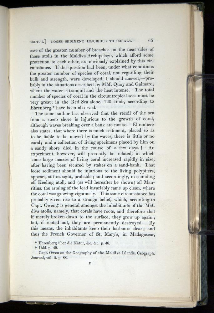 Image of Darwin-F271-1842-00065