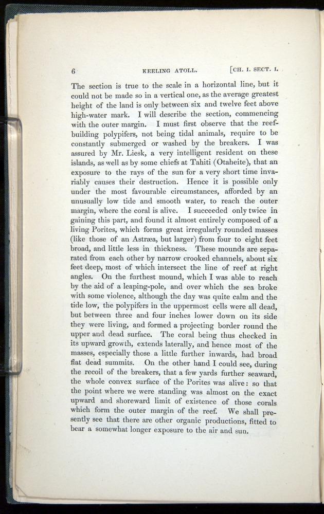 Image of Darwin-F271-1842-006
