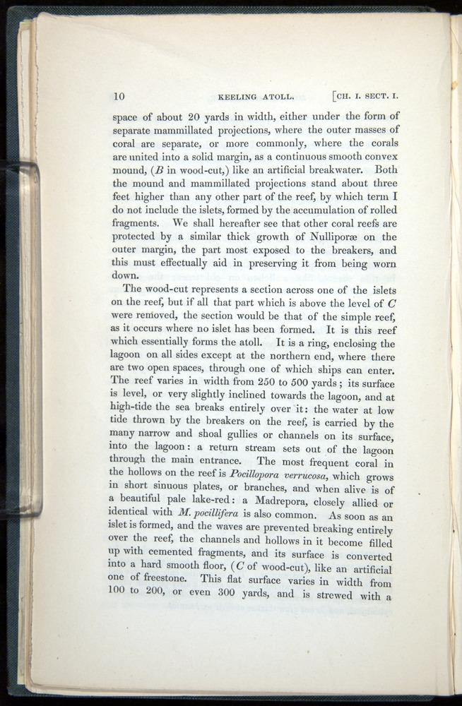 Image of Darwin-F271-1842-010
