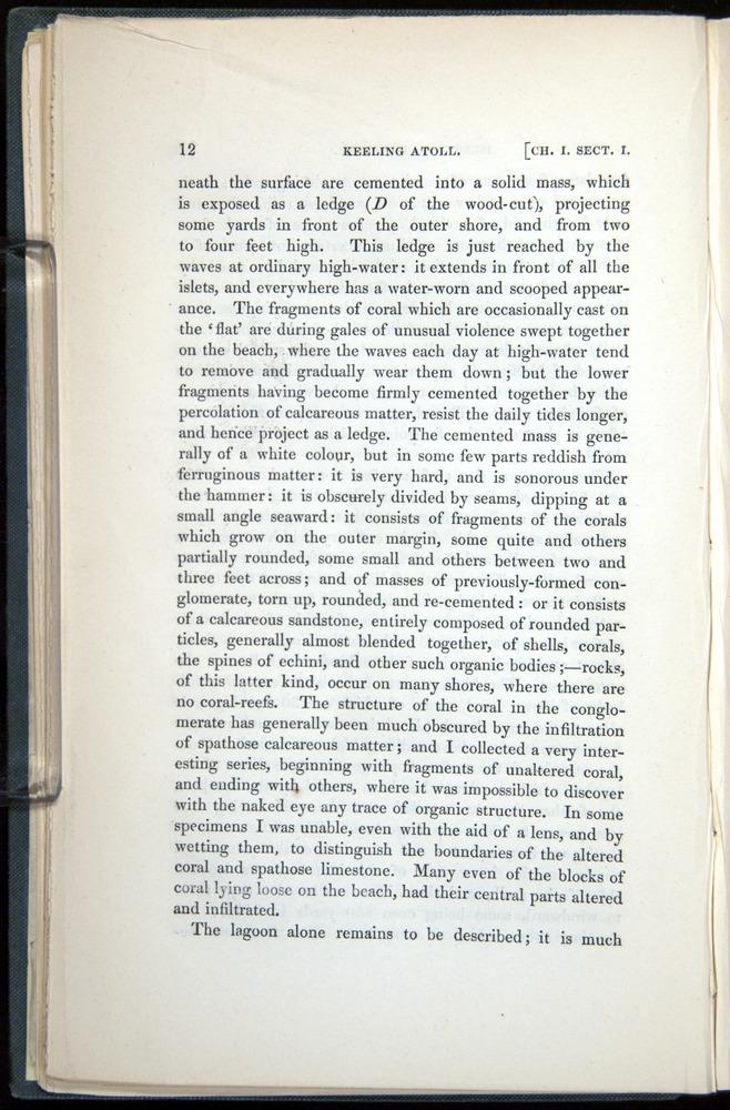 Image of Darwin-F271-1842-012