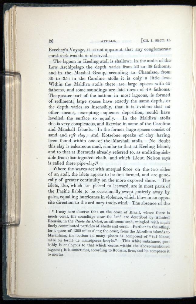 Image of Darwin-F271-1842-026