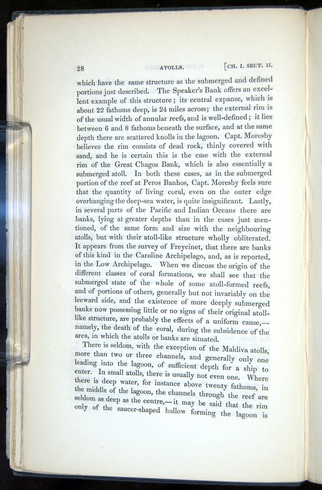 Image of Darwin-F271-1842-028