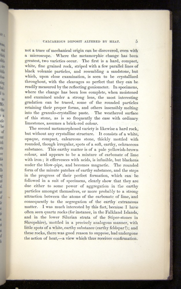Image of Darwin-F272-1844-00005