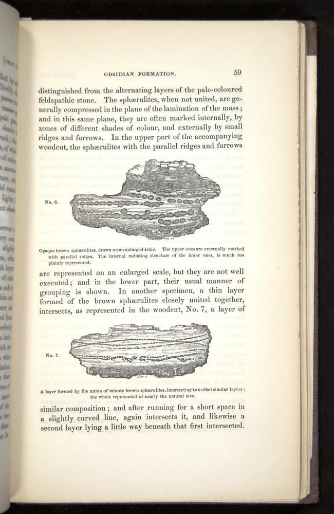 Image of Darwin-F272-1844-00059