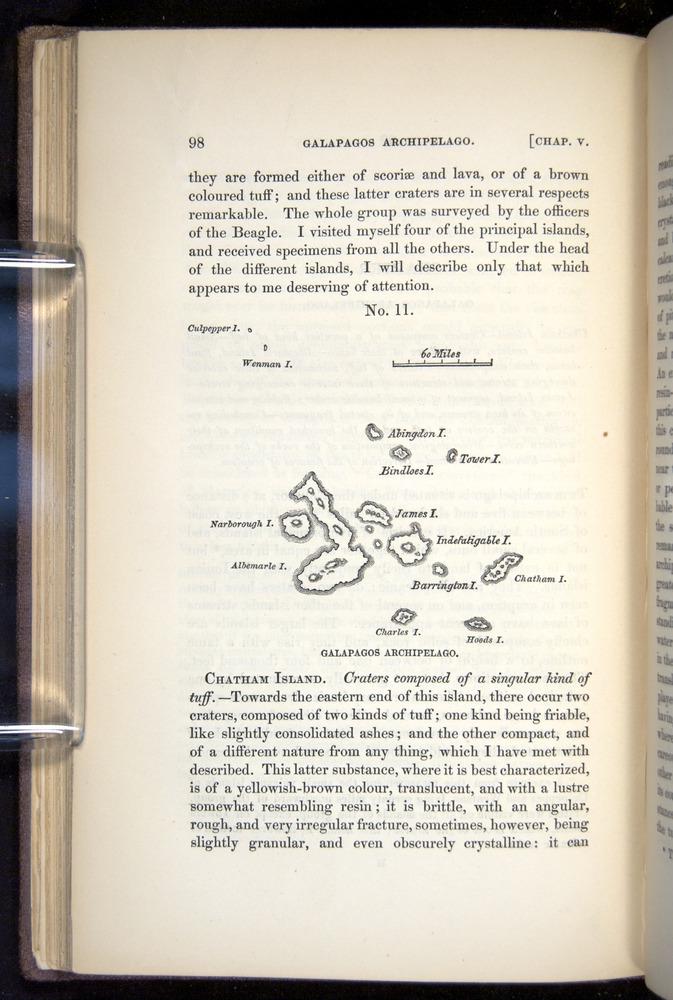 Image of Darwin-F272-1844-00098